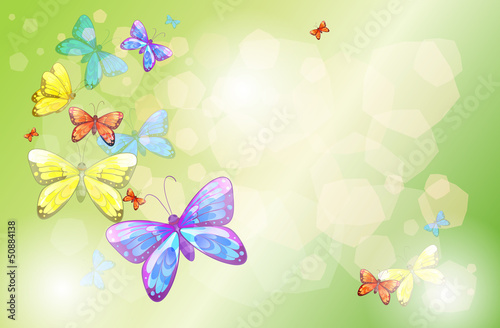 Foto op Aluminium Vlinders A stationery with colorful butterflies