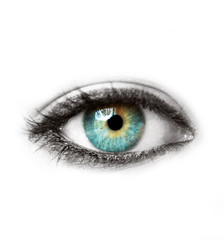 Beautiful blue human eye isolated on white macro shot