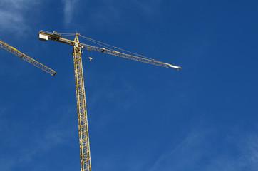 The old crane