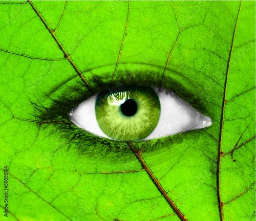 Fototapeten,grün,konzept,oberfläche,menschlich