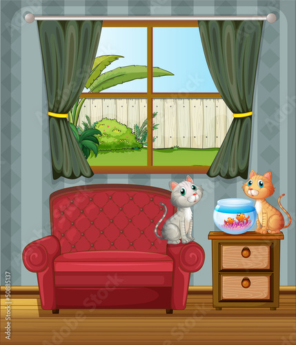 Tuinposter Katten The two cats watching the aquarium