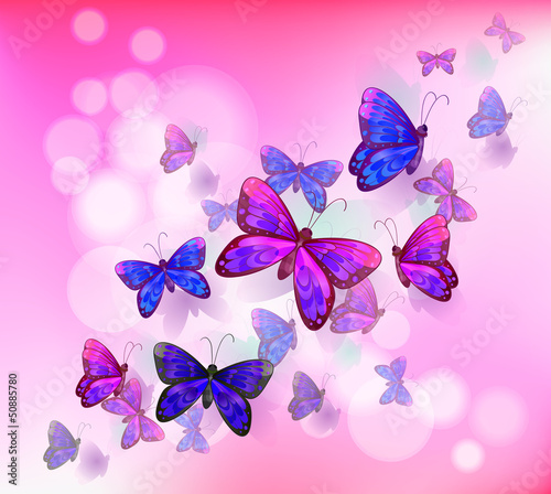 Fotobehang Vlinders A pink stationery with a group of butterflies