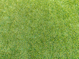 Artificial Football Stadium Turf