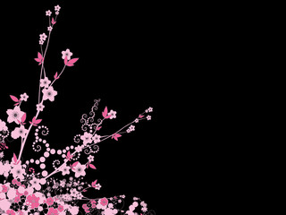 Cherry Blossom Sakura Flowers Pink Black