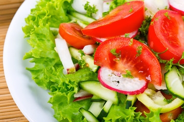 Plate with fresh salad close - up