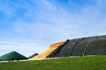 Biogasanlage, Maissliage