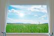meadow and window