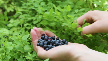 Close-up of woman's hand with blueberries
