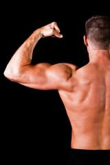 muscular bodybuilder's biceps