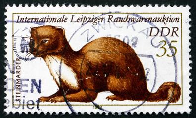 Postage stamp GDR 1982 Stone Marten