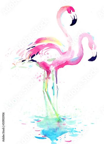 Leinwanddruck Bild flamingo