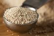 Organic Raw Yeast for baking bread