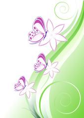 sfondo verde fiori e farfalline