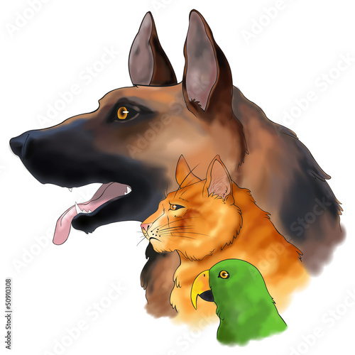Three pets looking forward in a column (vector)