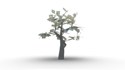 Growing Tree of Hundred US Dollars