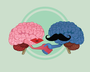 woman and men brains peace