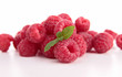 isolated raspberries on white background