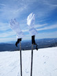 Mountain ski gloves