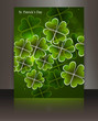 Brochure beautiful brochure reflection st patricks day vector