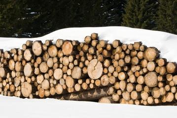 Catasta di tronchi sotto la neve