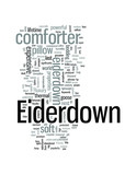 Eiderdown For a Princely Sum You Can Sleep Like Royalty. poster