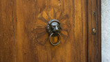 Door with lion head knocker