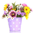 beautiful bouquet of bright flowers in metal pot isolated