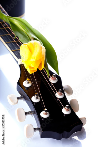 Guitar and yellow tulip.