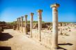 Nea Pafos, Ancient Columns