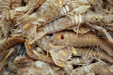 Krebstiere am Fischmarkt