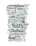 Feline Asthma poster