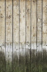 Background and spoiled rotten wood
