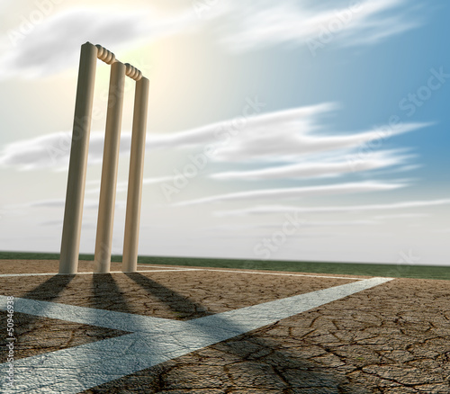 Cricket Pitch And Wickets Perspective