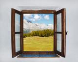 The open window - 50947504