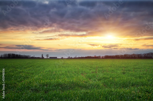 Landscape with green meadow and sun. Sunset.