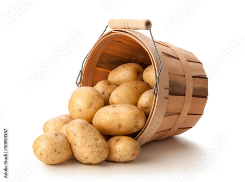 Golden Potatoes in a Basket