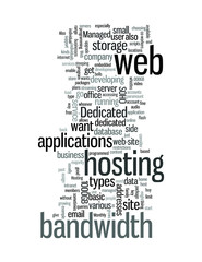 Using Managed Dedicated Web Hosting Services