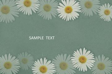 菊 花 和紙 春 カード
