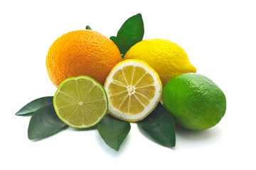 citrus on white background