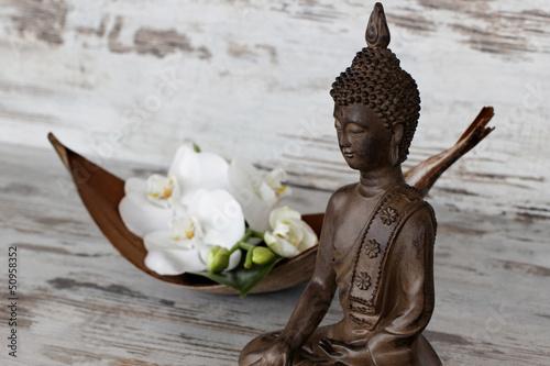 Fototapeten,buddhas,buddhismus,orchidee,orchidee