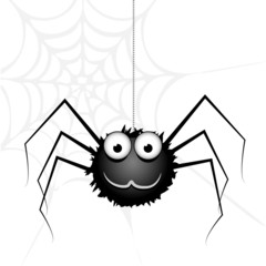 Vector cute spider