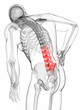 3d rendered illustration - backache male