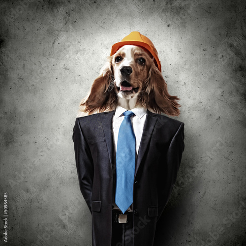 Fototapeta Funny portrait of a dog in a suit