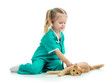 Cute kid girl playing doctor with cat isolated