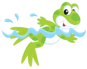 Funny green frogling swimming in water