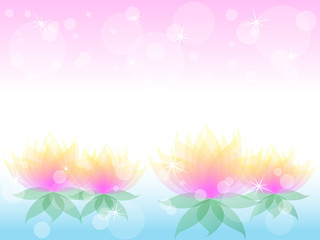 Soft waterlily flower with pink