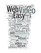 Will Easy Web Video Reduce the Video File