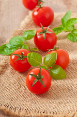 Freshly harvested summer cherry tomatoes on wooden background