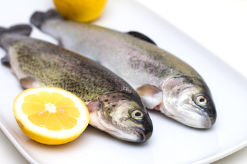 Raw trout fish with lemon slices