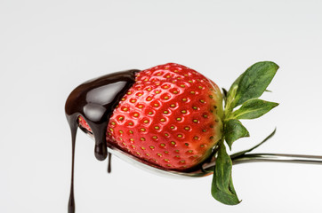 Strawberry with chocolate 4